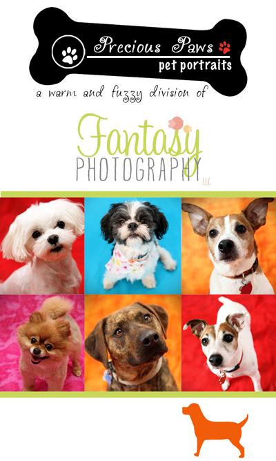 Winston Salem Pet Photographer| Dog Photography by Fantasy Photography