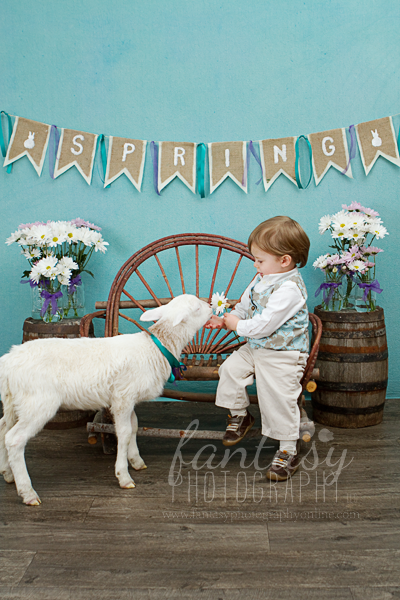 Winston Salem newborn Portraits Photographer - Fantasy Photography
