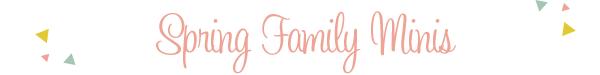 Maternity Photographers in Winston Salem, NC | Triad Prenatal Photography