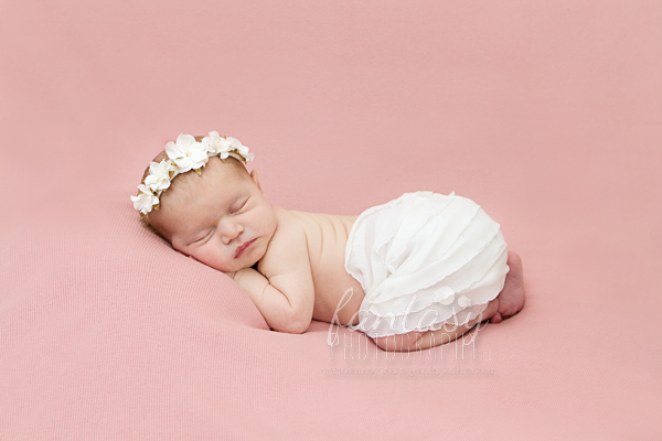 Newborn Photographers in Winston Salem, NC | Newborn Baby Photographers in Winston Salem